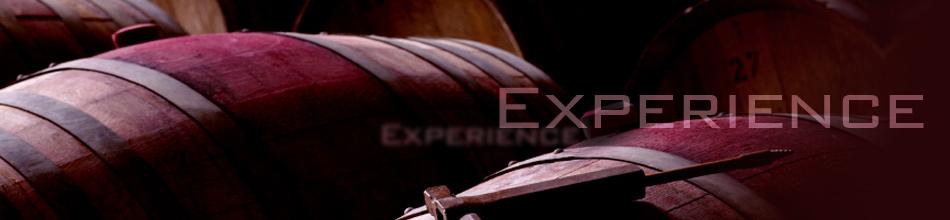 RoBroExperienceHeader.jpg